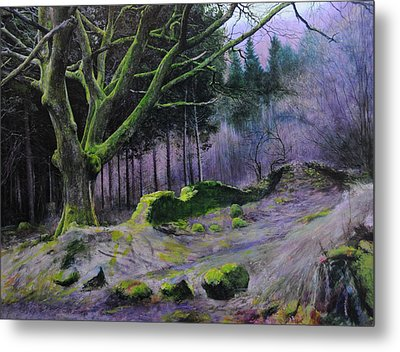 Forest In Wales Metal Print by Harry Robertson