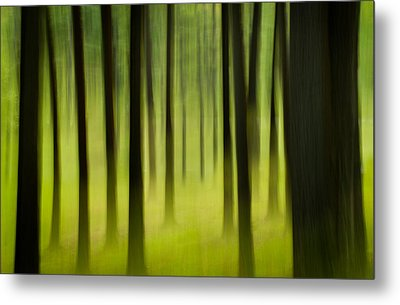 Metal Print featuring the photograph Forest by Joye Ardyn Durham