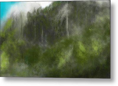 Forest Landscape 10-31-09 Metal Print by David Lane