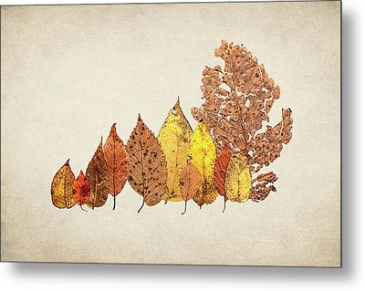 Forest Of Autumn Leaves II Metal Print