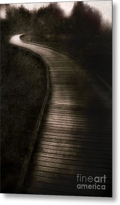 Forest Of Darkness Metal Print by Jorgo Photography - Wall Art Gallery