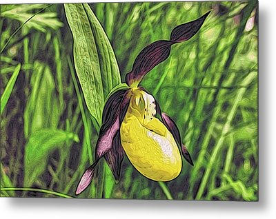 Forest Orchid Metal Print