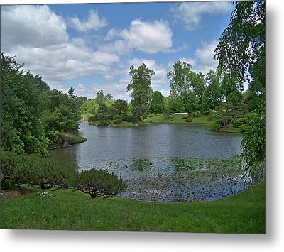 Forest Park View Metal Print by Julie Grace