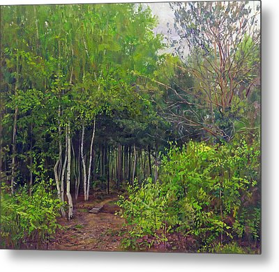 Forest Path Leading Into The Forest Metal Print
