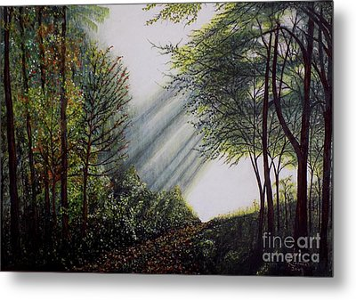 Forest Pathway Metal Print by Judy Kirouac