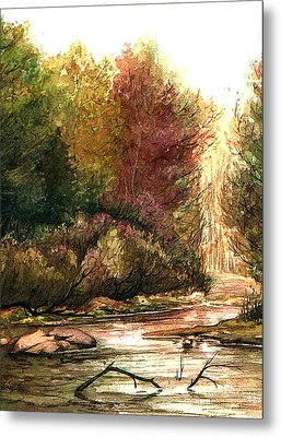 Forest Puddle Metal Print