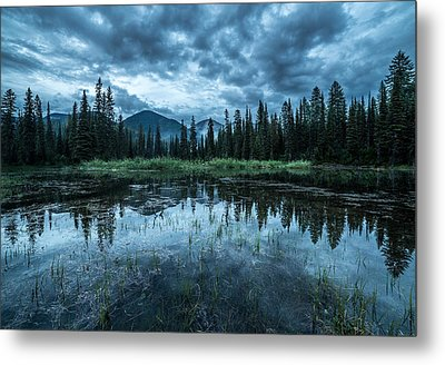 Forest Reflection // Whitefish, Montana  Metal Print by Nicholas Parker