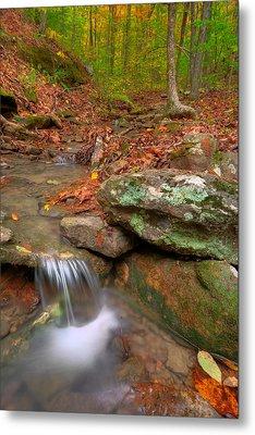 Forest Stream Metal Print by Ryan Heffron
