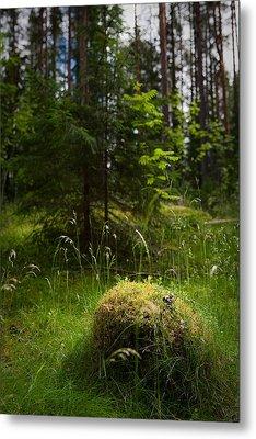 Forest Tales Metal Print by Konstantin Dikovsky