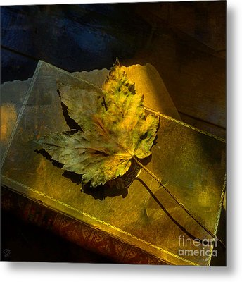 Metal Print featuring the photograph Forever Autumn by LemonArt Photography