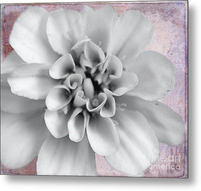 Forever Yours Metal Print