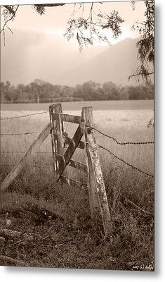Forgotten Fields 2 Metal Print
