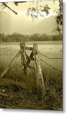 Forgotten Fields Metal Print by Holly Kempe