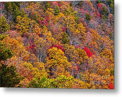 Fort Mountain State Park Cool Springs Overlook Metal Print by Bernd Laeschke