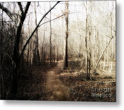 Metal Print featuring the photograph Fort Yargo Trail by Utopia Concepts