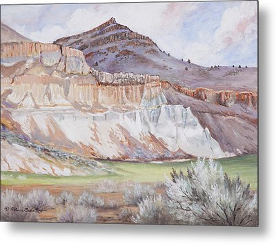 Fossil Beds  Metal Print