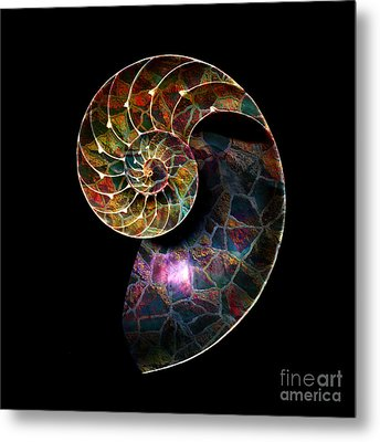 Metal Print featuring the digital art Fossilized Nautilus Shell by Klara Acel