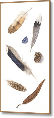 Found Treasures Metal Print by Lucy Arnold