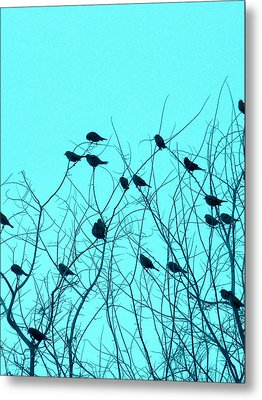 Four And Twenty Blackbirds Metal Print