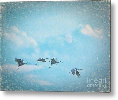 Four Cranes One Moon Metal Print by Janice Rae Pariza