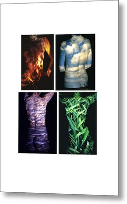 Four Elements Metal Print by Arla Patch