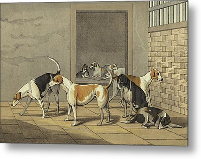 Fox Hounds Metal Print by Henry Thomas Alken