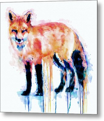 Fox  Metal Print by Marian Voicu