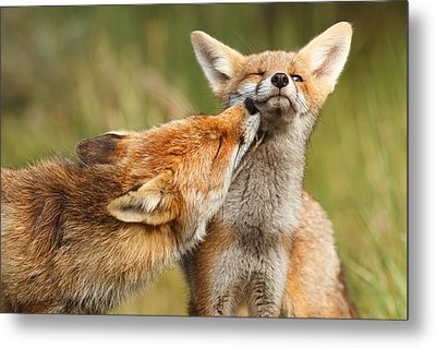 Foxy Love Series - But Mo-om Metal Print