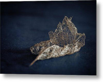 Metal Print featuring the photograph Fragment by Tim Nichols