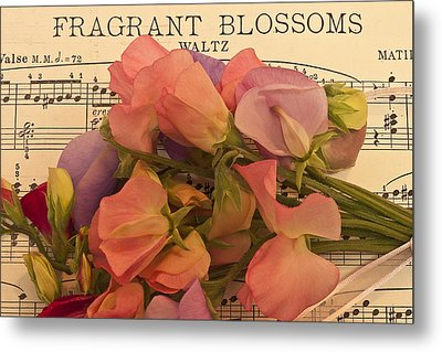 Fragrant Blossoms Metal Print by Sandra Foster