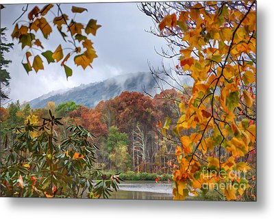 Framed By Fall Metal Print