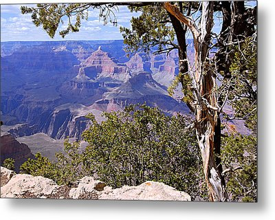 Framed View - Grand Canyon Metal Print by Larry Ricker