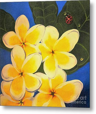 Frangipani With Lady Bug Metal Print by Sandra Phryce-Jones