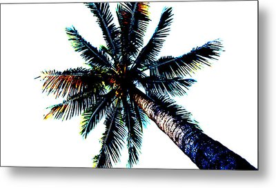 Frazzled Palm Tree Metal Print