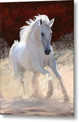 Free Spirit Metal Print by James Shepherd