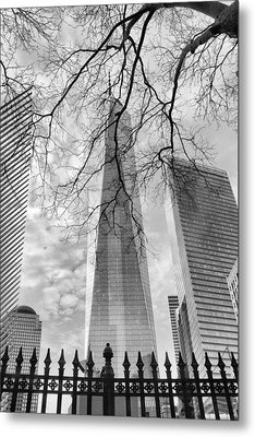 Standing Tall Metal Print by Jessica Jenney