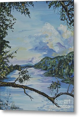 French Broad At Biltmore Estates Nc Metal Print by Johnnie Stanfield