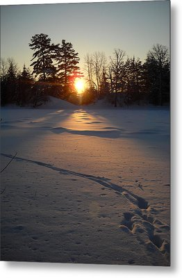 Fresh Deer Tracks At Sunrise Metal Print