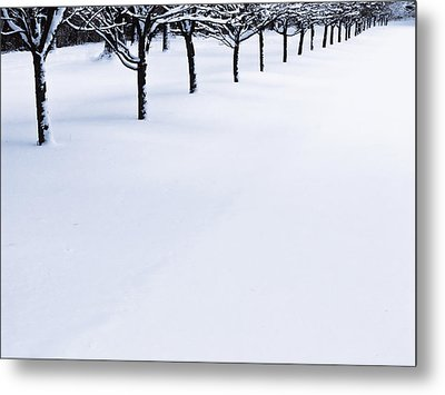 Fresh Snow Metal Print