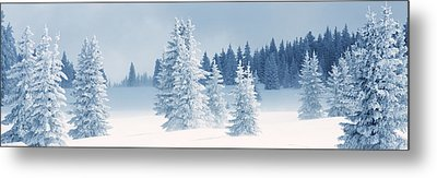 Fresh Snow On Pine Trees, Taos County Metal Print by Panoramic Images