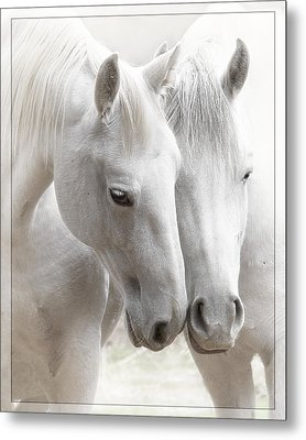 Friends Metal Print by Wes and Dotty Weber