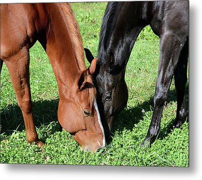 Friends Forever Metal Print