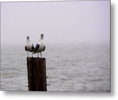 Friends In The Fog Metal Print