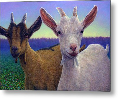 Friends Metal Print by James W Johnson