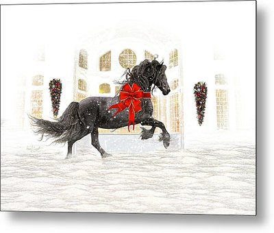 Friesian Christmas Metal Print by Fran J Scott