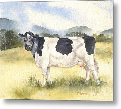 Friesian Cow Metal Print by Sandra Phryce-Jones