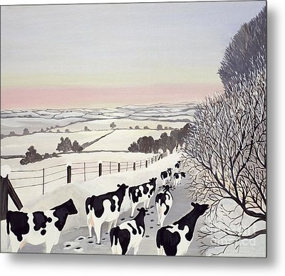 Friesians In Winter Metal Print by Maggie Rowe