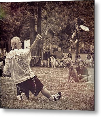 Metal Print featuring the photograph Frisbee Catcher by Lewis Mann
