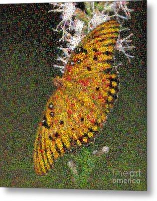 Fritillary Butterfly Mosaic Metal Print by Scott Camazine