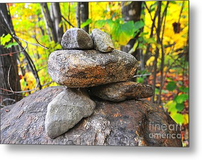 Frog Cairn Metal Print by Catherine Reusch Daley